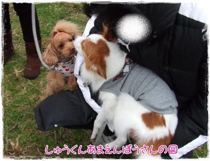 2009125tabasachan.jpg