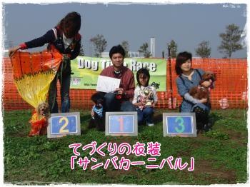 2009126nohamama1.jpg