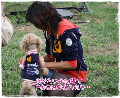 2009126nohamama2.jpg