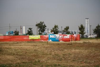 2009926.jpg