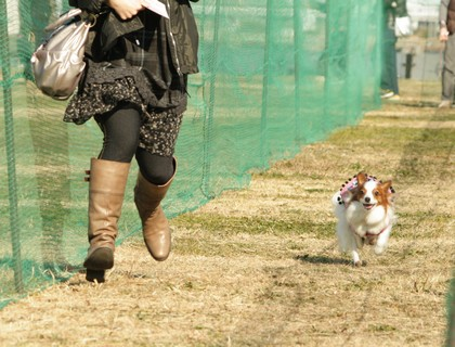 2010117milufyrun1.jpg