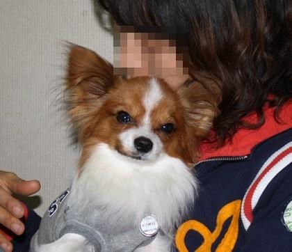 201013noharamama2.jpg
