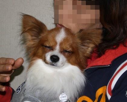 201013noharamama3.jpg