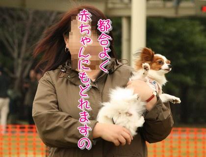 2010213mimi2.jpg