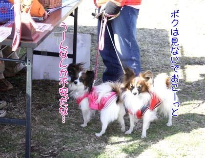 201027kuji.jpg
