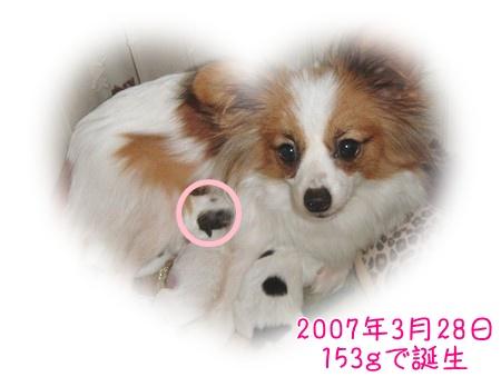 2010327mama.jpg