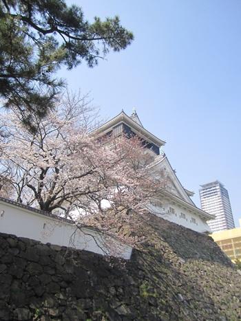 2011kokura4.jpg