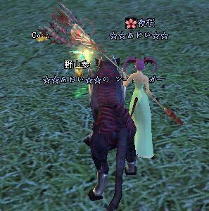2008-12-14 20野山参♪