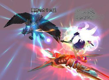 2009-01-02 23-07 カラス王♪