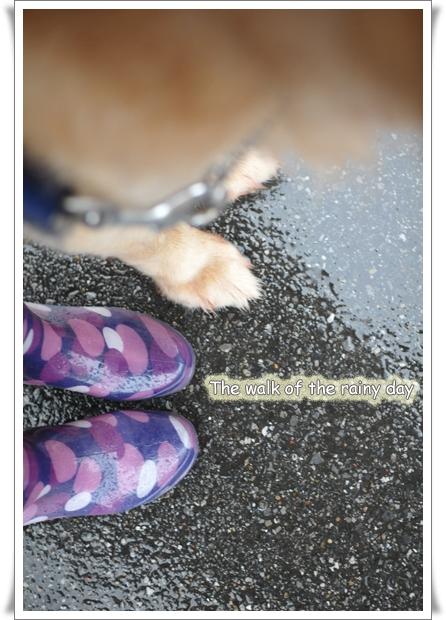 雨の日のロゴ.jpg