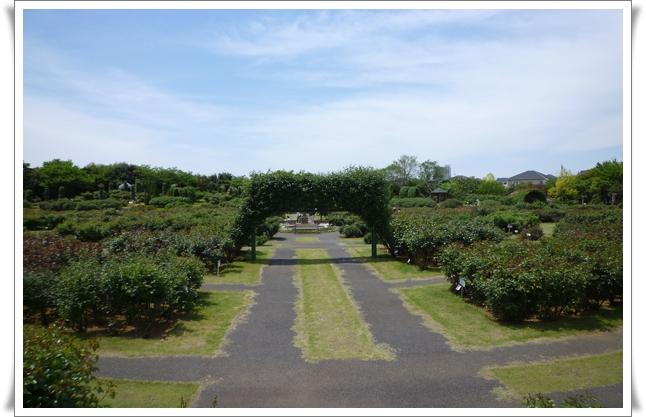 ガーデン②.jpg