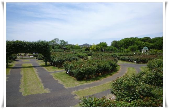 ガーデン③.jpg