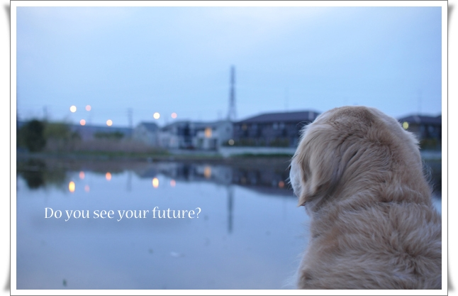 君の未来.jpg
