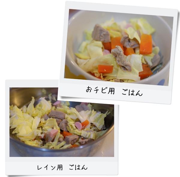 豪華ごはんのコピー.jpg