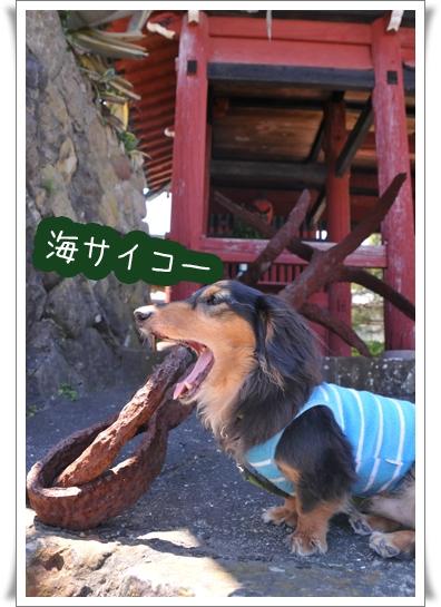 うみ最高.jpg