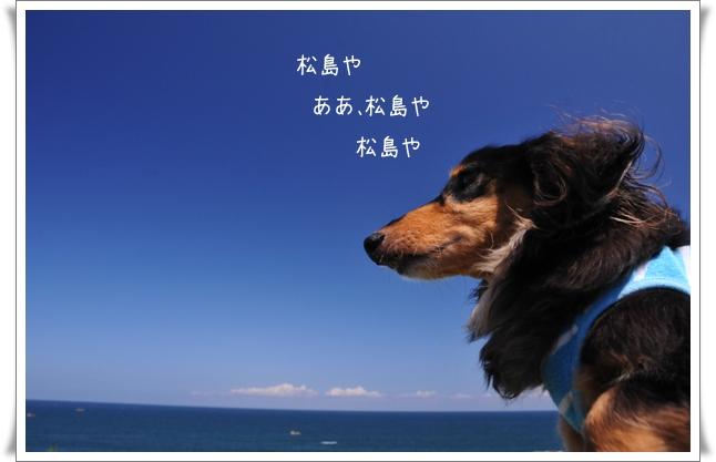 松島や.jpg