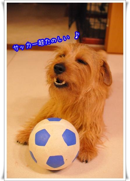 サッカー楽しい.jpg