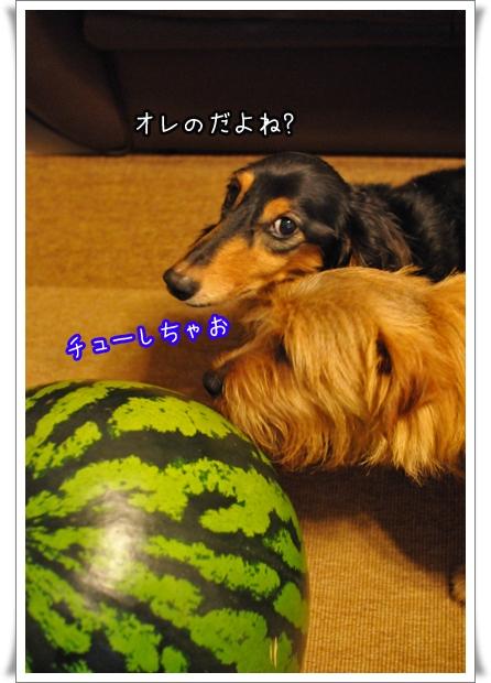 ちゅーしちゃお.jpg