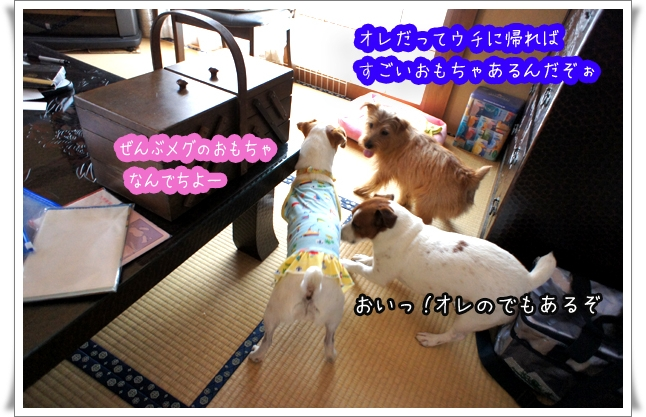 おもちゃの戦い.jpg