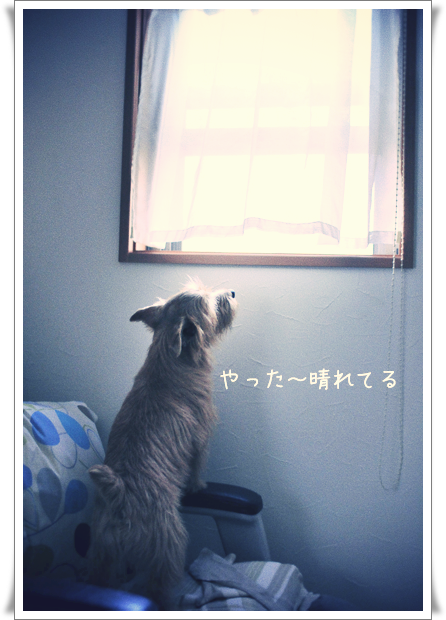 お天気チェック.jpg_effected.png