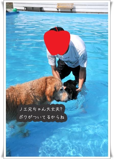 ノエル好き②.jpg