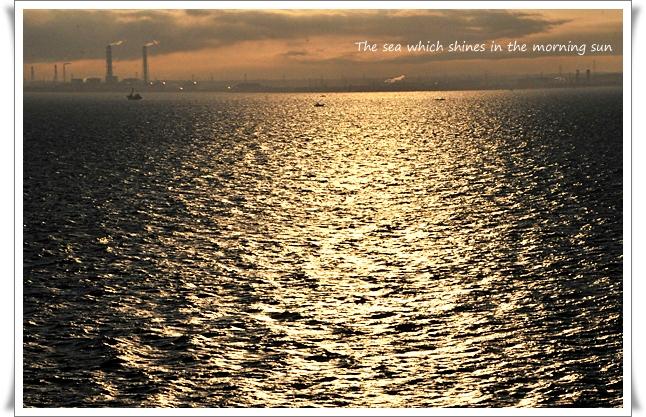 朝日の海.jpg