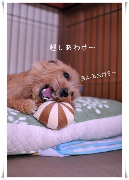 目ん玉すき.jpg