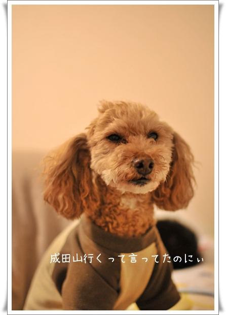 成田山いく.jpg
