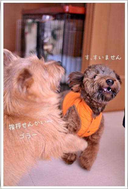 挨拶せんかい_edited-1.jpg