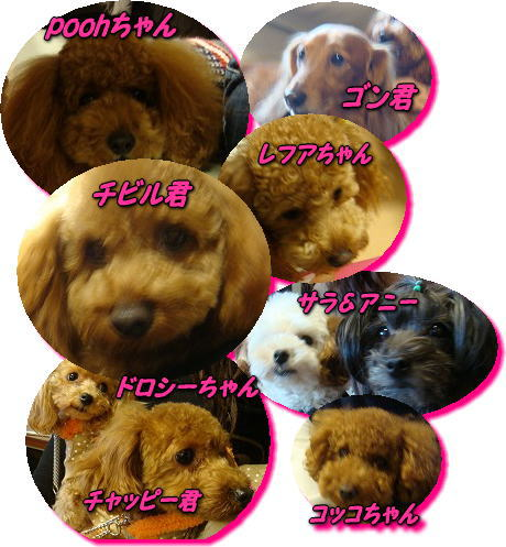image_20090120102148.jpg