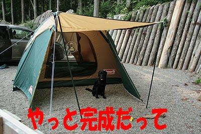 矢板キャンプ6