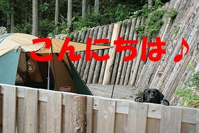 矢板キャンプ8