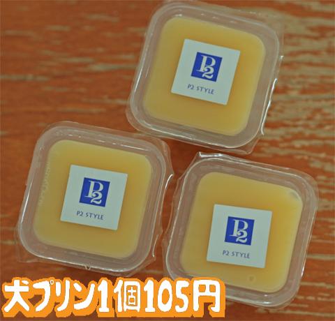 091002-1.jpg