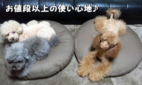 1_20111030163139.jpg