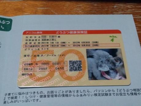 DSC_0020_20110611220210.jpg
