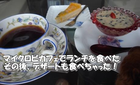 jyo1_20100124221524.jpg