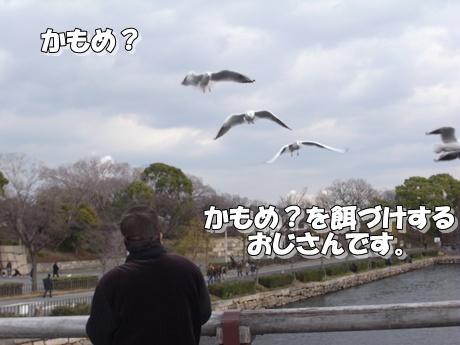 jyo3_20100124221524.jpg