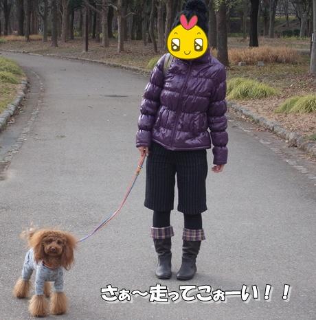 jyo4_20100124221523.jpg