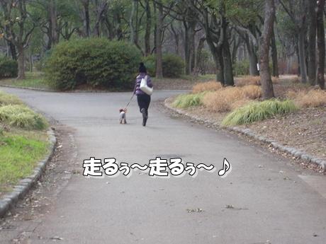 jyo5_20100124221630.jpg