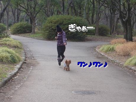 jyo6_20100124221629.jpg
