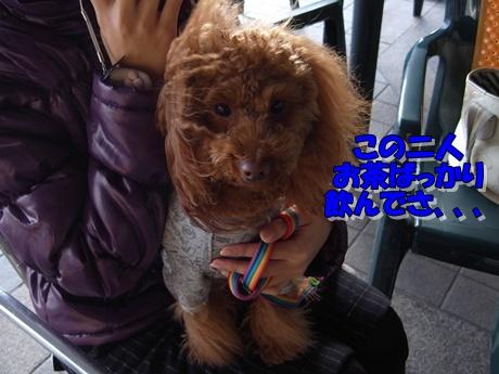 jyo7_20100124221629.jpg