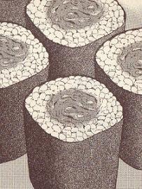 アサリの海苔巻き図