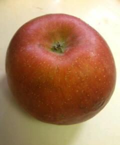 リコッタチーズとリンゴのパンケーキ11