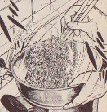 コブスパの調理風景