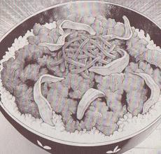 バター牛丼図
