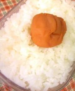 赤味噌ハンバーグのお弁当12