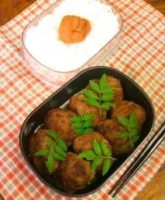 赤味噌ハンバーグのお弁当10