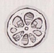 レンコン料理四種図