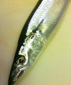 秋刀魚チャーハン2