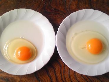初卵の黄身の味噌漬け4